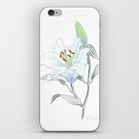 casablanca iPhone & iPod Skins featuring Lily 01 Botanical Flower * White Casablanca Lily by Antony Corso