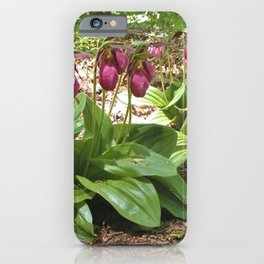 New England Wild Orchid Lady Slipper Flowers iPhone Case