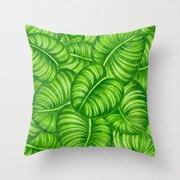 Calathea leaves Throw Pillow