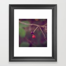 Vintage Nature Framed Art Print