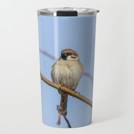 Tree Sparrows on branch (Passer montanus) Close Up Travel Mug