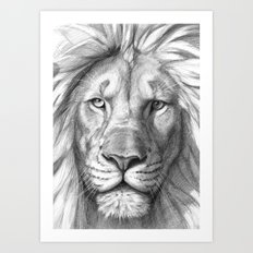 Lion G106 Art Print