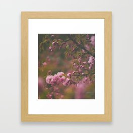 Sprung on Spring Framed Art Print