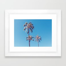 palm tree ver.sunny day Framed Art Print