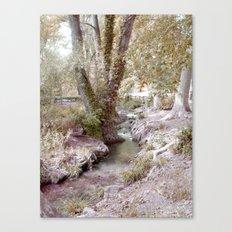 Cristaline  Canvas Print