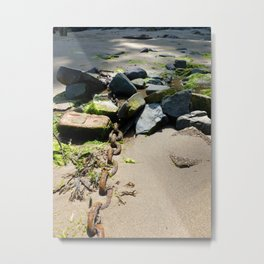 Beachbound Metal Print