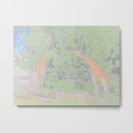 Giraffe Animal Abstract African Mammal Ruminant Metal Print