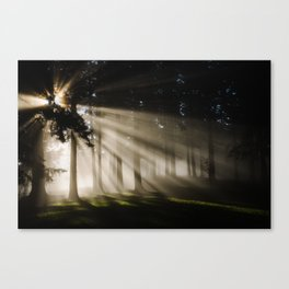 Boring Forest Canvas Print