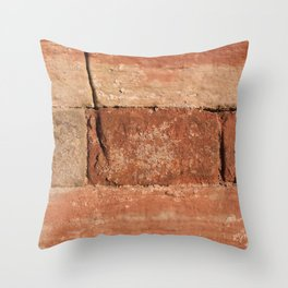 Ancient Sandstone Wall Throw Pillow