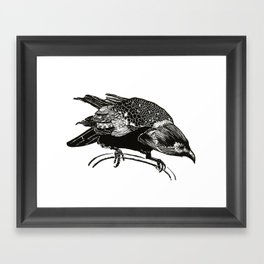 Watching crow Framed Art Print
