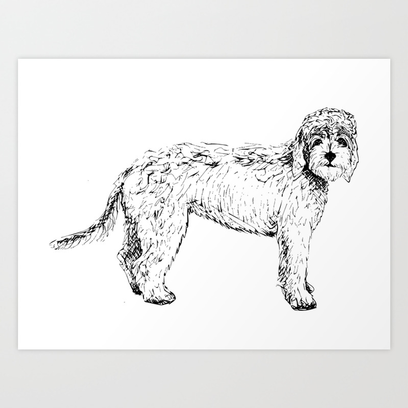 Labradoodle Goldendoodle Ink Drawing Art Print By Sophiakateprints Society6