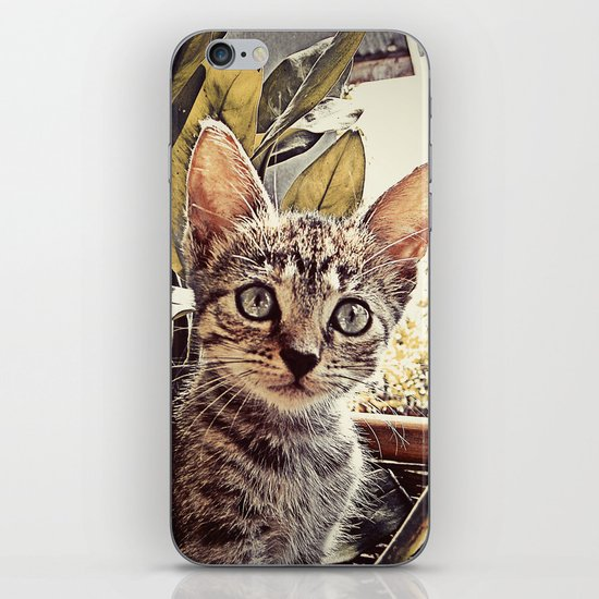 Mouser iPhone & iPod Skin