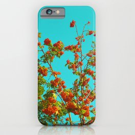 Mandarine by #Bizzartino iPhone Case