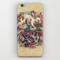 bunny iPhone & iPod Skins featuring Dust Bunny by Kate O'Hara Illustration