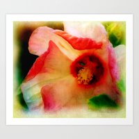 hibiscus Art Prints featuring Hibiscus by Christine Belanger