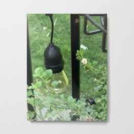 Decorative Bulb among Flowering Plants Metal Print
