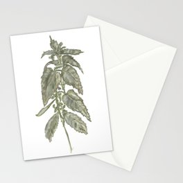 Nettle Stationery Cards
