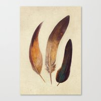 feathers Canvas Prints featuring Three Feathers  by Terry Fan