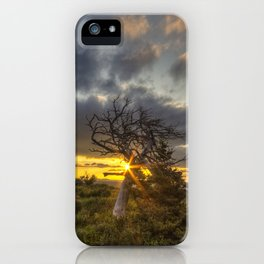 Old Friend - Many Glacier iPhone Case