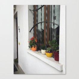 Windowsill in Milan Canvas Print
