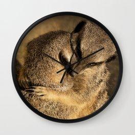 Meercat Loving  Wall Clock