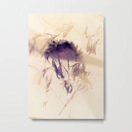 Lumen S2 VE3 Metal Print