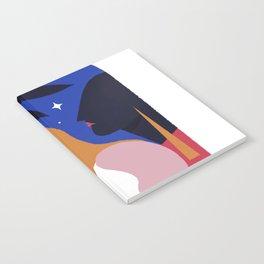 BRILHA Notebook