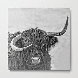 Highland Bull in Norway Metal Print
