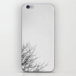 II iPhone Skin