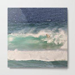 ALPACA - SURFING HAWAII Metal Print