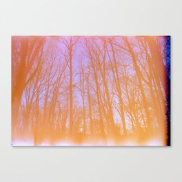 Expired Winter Colors Canvas Print