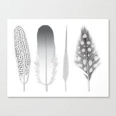 Feathers Trio Canvas Print