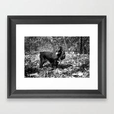 Rambunctious Framed Art Print
