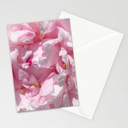 Fuchsia Ribbons Stationery Cards