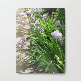 Perennial Walk Metal Print