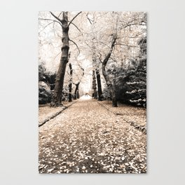 Terra Nostra Park Canvas Print