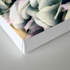 Soft Subtle Petal Ruffles Abstract  Canvas Print