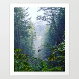 Foggy Freedom Art Print