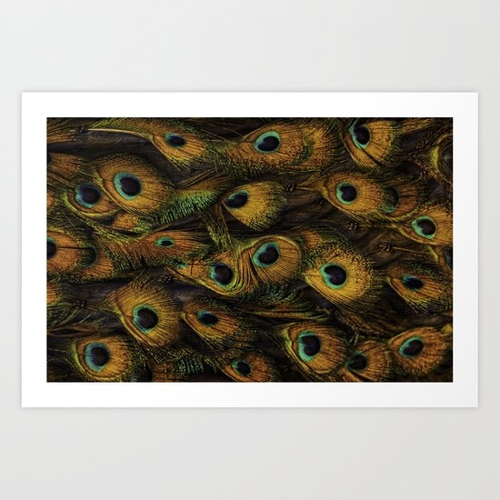 golden peacock Art Print