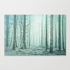 insights Canvas Print