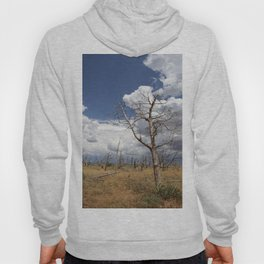 Big Sky Over Colorado Plateau Hoody