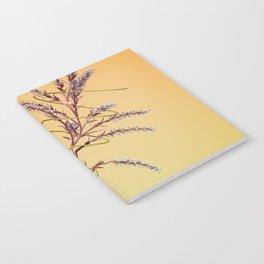Liam Thomas - Teulu Notebook
