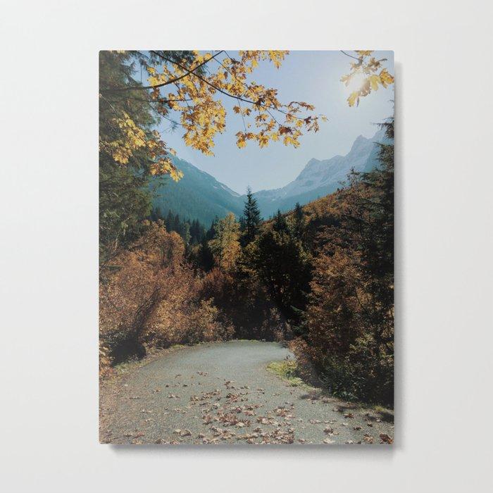 Washington Fall Rd Metal Print