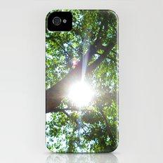 Sunshine iPhone (4, 4s) Slim Case