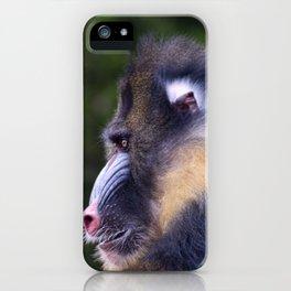 Big Mandrill iPhone Case