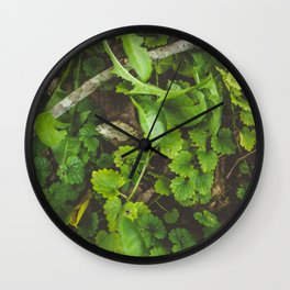 Only Wall Clock