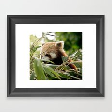 it's a firefox ? Framed Art Print