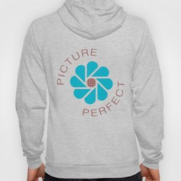 Picture Perfect Hoody