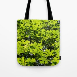 Sun-Dappled Forest in the Spring Tote Bag