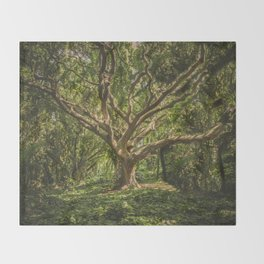 Spirits inside the wood Throw Blanket